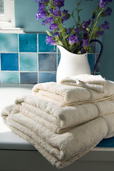Swallowtail Hill Towels