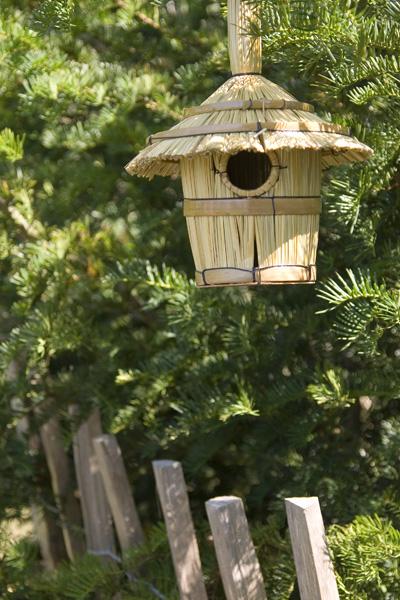 Swallowtail Hill Hanging Bird House
