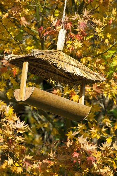 Swallowtail Hill Hanging Bird Table