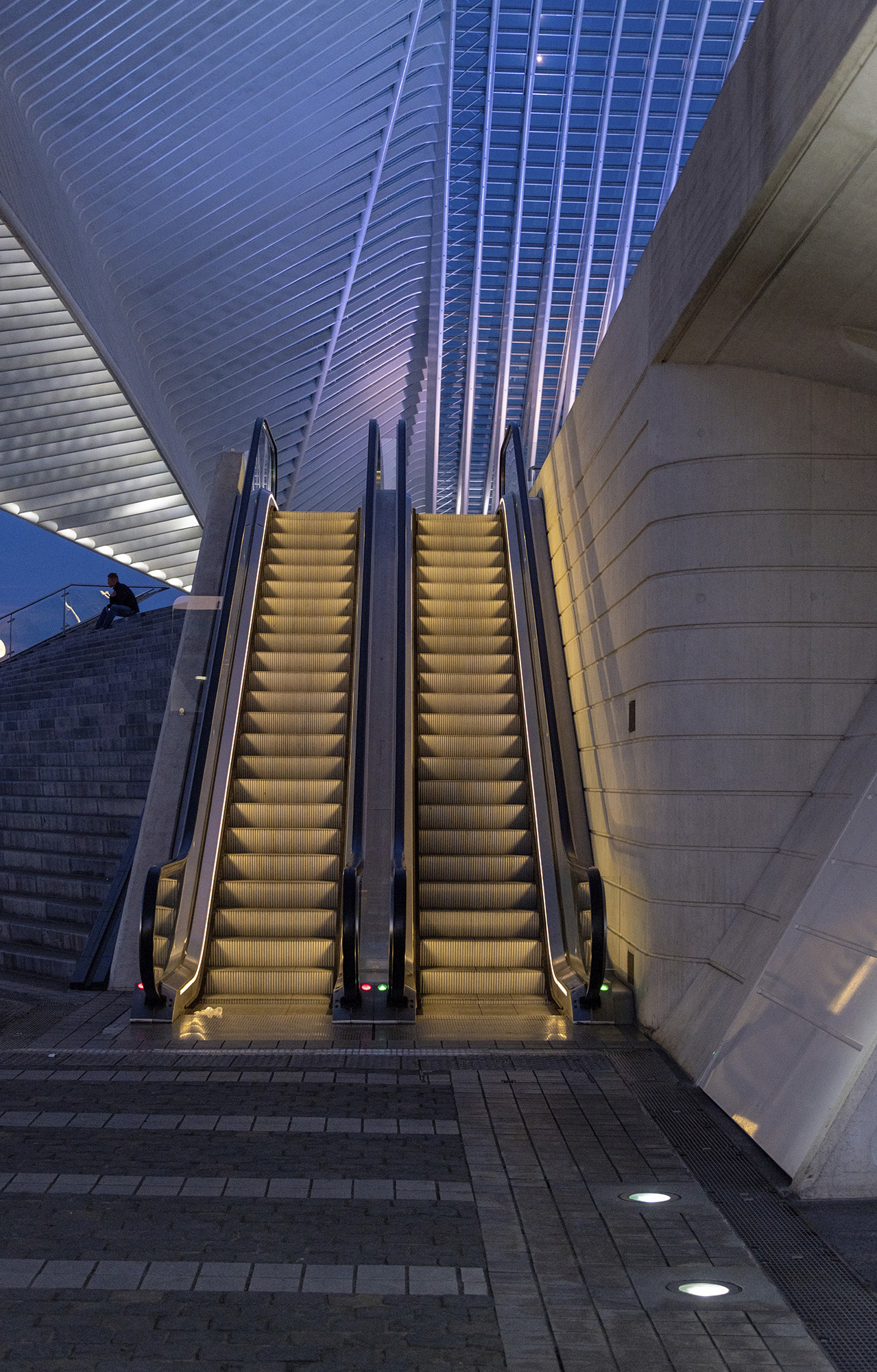 Liege Guillemins Intercity Railway Station by Santiago Calatrava