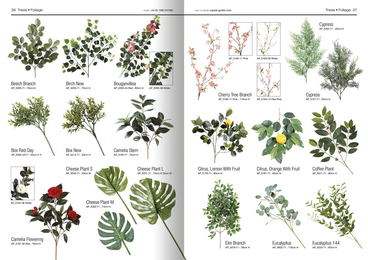Capital Garden Products Plants Catalogue