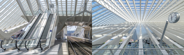Liege Guillemins Station by Santiago Calatrava photographed by Colin Walton at WaltonCreative